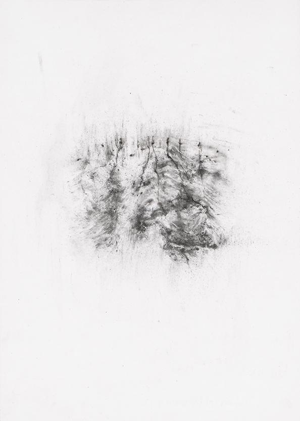 Herbier humain (série), extrait n°2, fusain sur papier, 30 x 21 cm, 2018