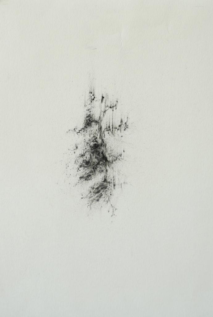 Herbier humain (série), extrait n°9, fusain sur papier, 21 x 30 cm