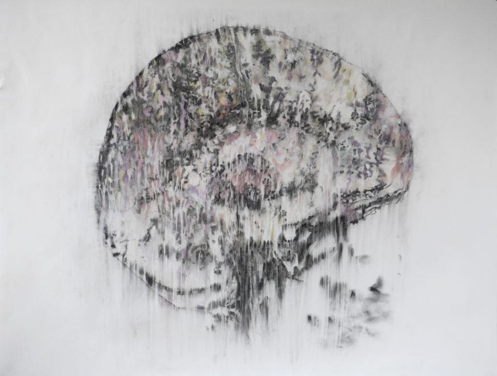 Escape, fusain et crayon de couleur, 2020, 115 x 145