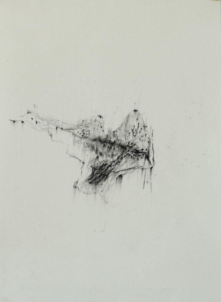 Herbier humain (série), extrait n°20, fusain sur papier, 21 x30 cm