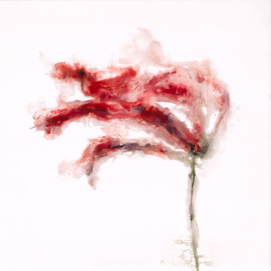 Sans titre, acrylique sous plexi, 51×51 cm, 2014
