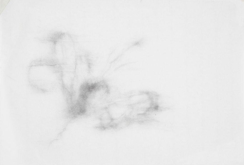 Sans titre, fusain sur papier, 20×20 cm, 2016