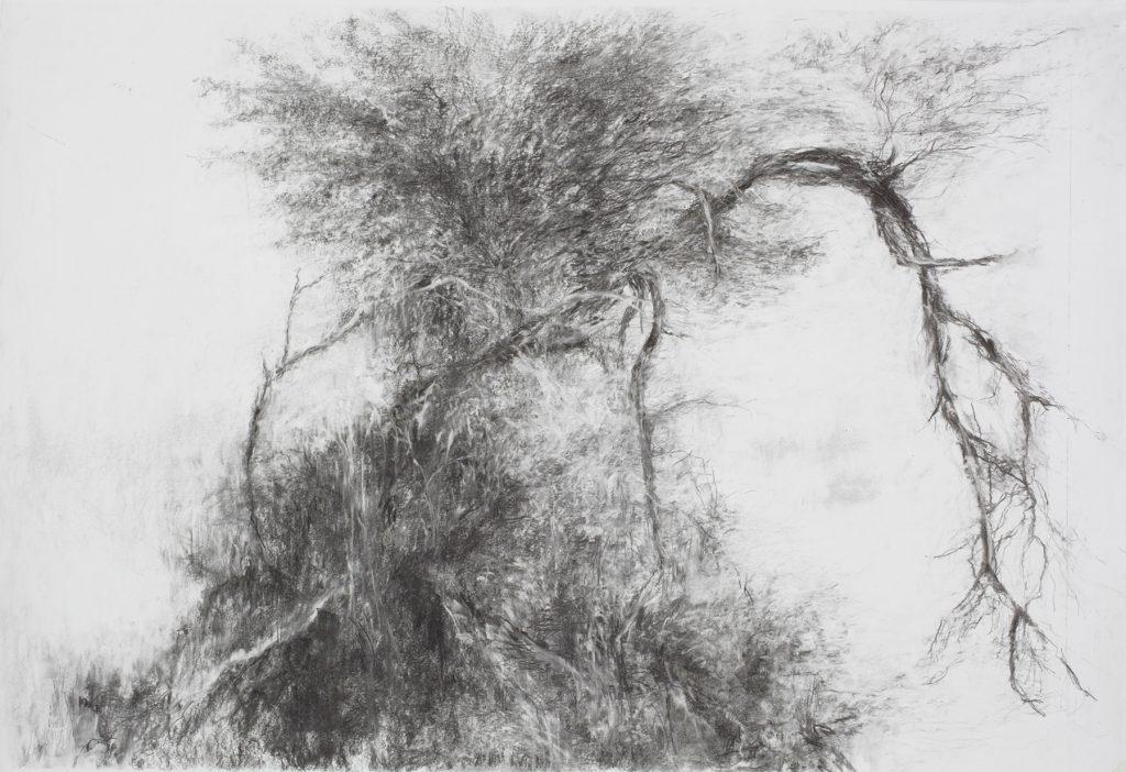 Sans titre, fusain sur papier, 78×115 cm, 2016