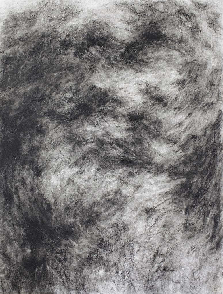 Sans titre, pierre noire sur papier, 65×49 cm, 2016