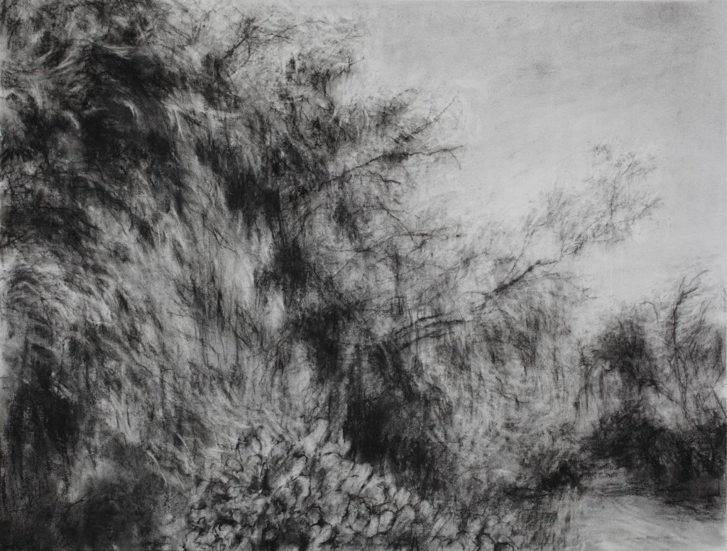Sans titre, pierre noire sur papier, 50×65 cm, 2016