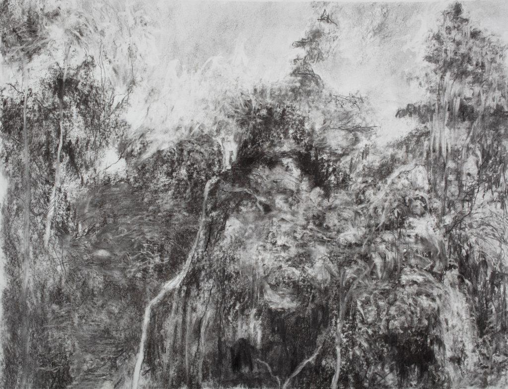 Sans titre, fusain sur papier, 50×65 cm, 2016