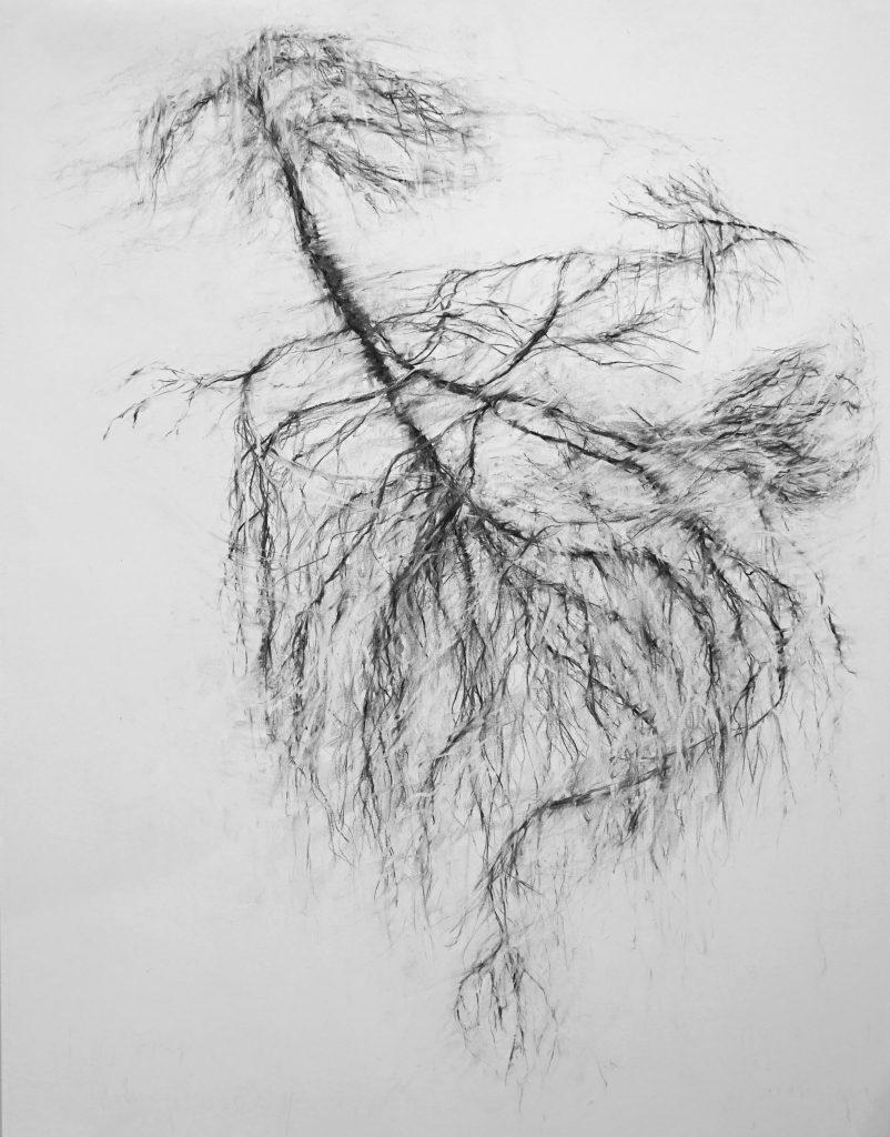 Que restera-t-il de moi quand même les vivants m'auront oubliée 2 (série Land of plenty), fusain sur papier, 65 x 50 cm, 2017