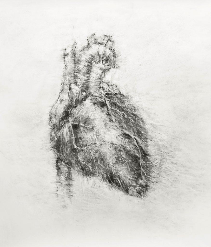 Coeur (série Land of plenty), fusain sur papier, 70 x 65 cm, 2017