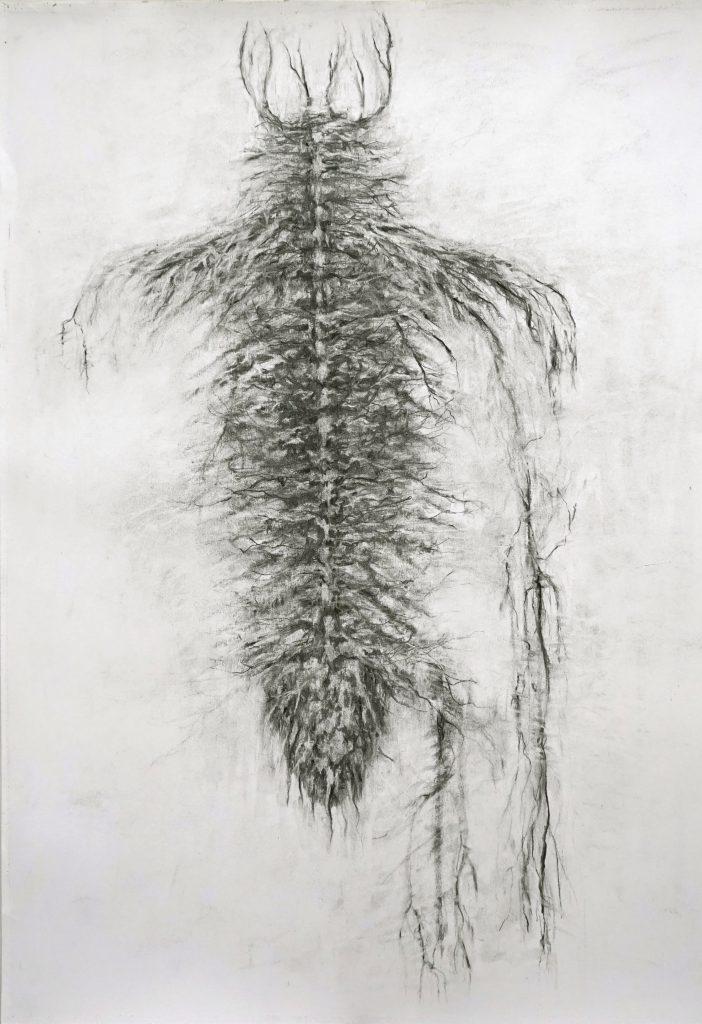 Gregor (série Land of plenty), fusain sur papier, 65 x 50 cm, 2017