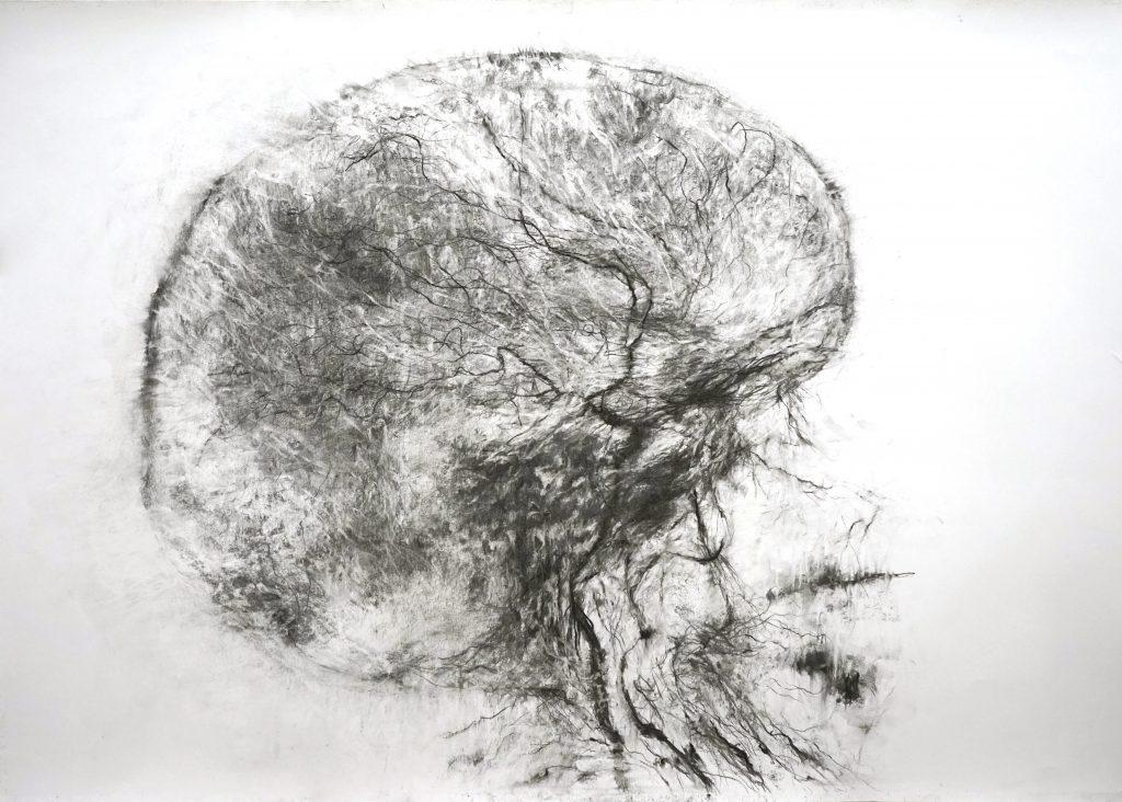 Anima (série Land of plenty), fusain sur papier, 70 x 100 cm, 2017