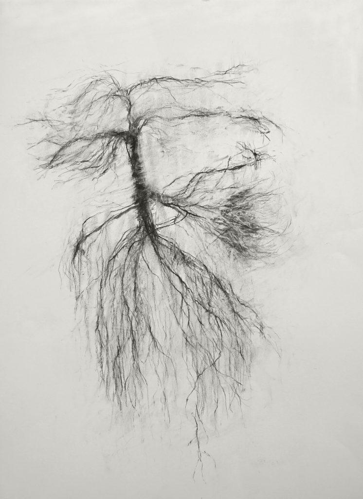 Que restera-t-il de moi quand même les vivants m'auront oubliée 1 (série Land of plenty), fusain sur papier, 65 x 50 cm, 2017