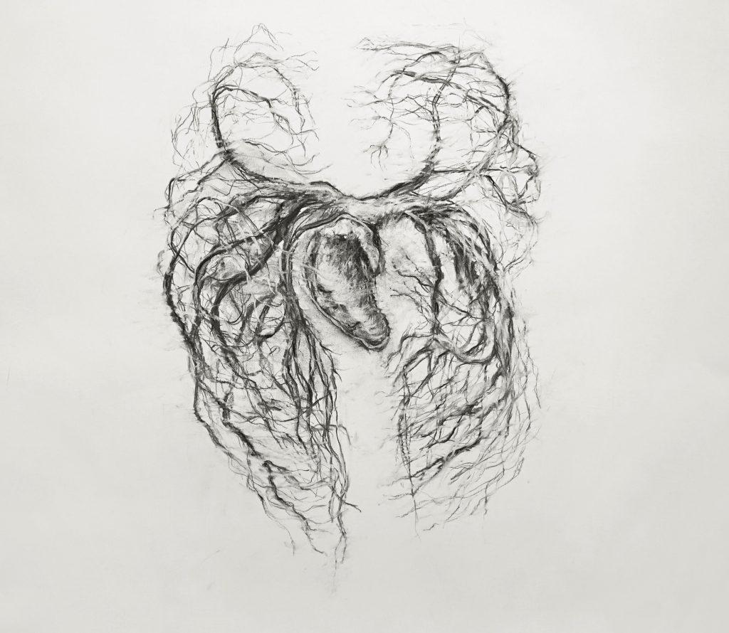 Système Sanguin (série Land of plenty), fusain sur papier, 65 x 65 cm, 2017