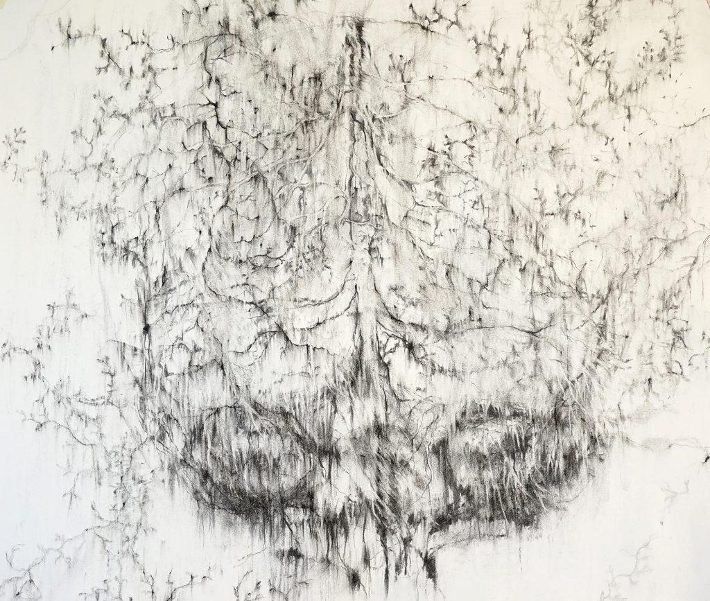 Oubli, fusain sur papier, 50 x 65 cm, 2017