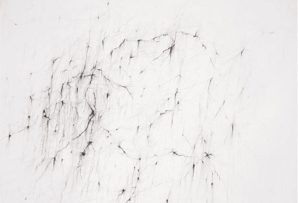Réseau III, fusain sur papier, 34 x 48 cm, 2017