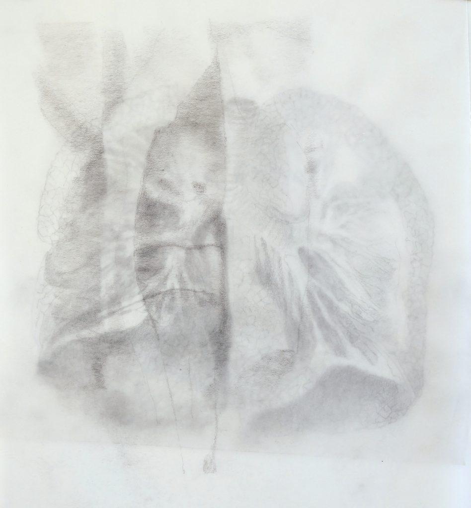 Souffle, dessin sur papier calque, 27 x 22 cm, 2017