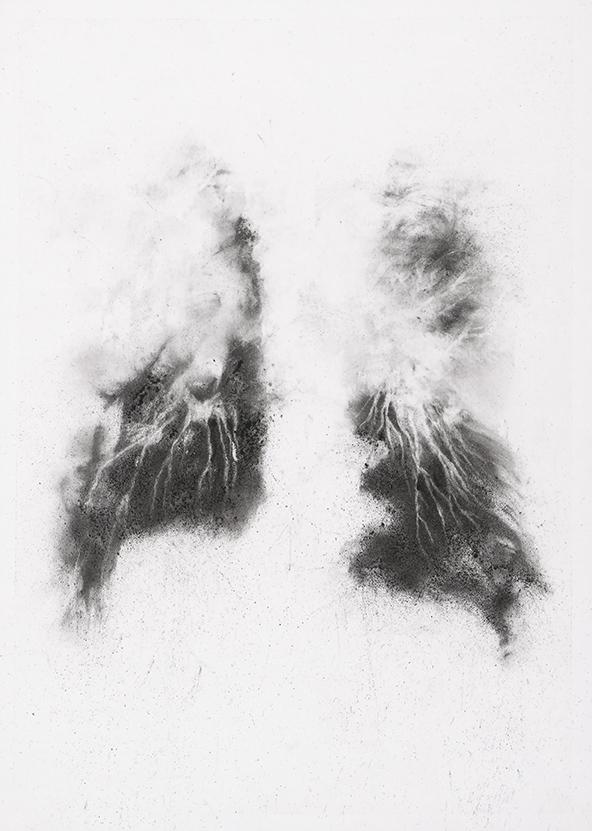 Herbier humain (série), extrait n°7, fusain sur papier, 30 x 21 cm, 2018