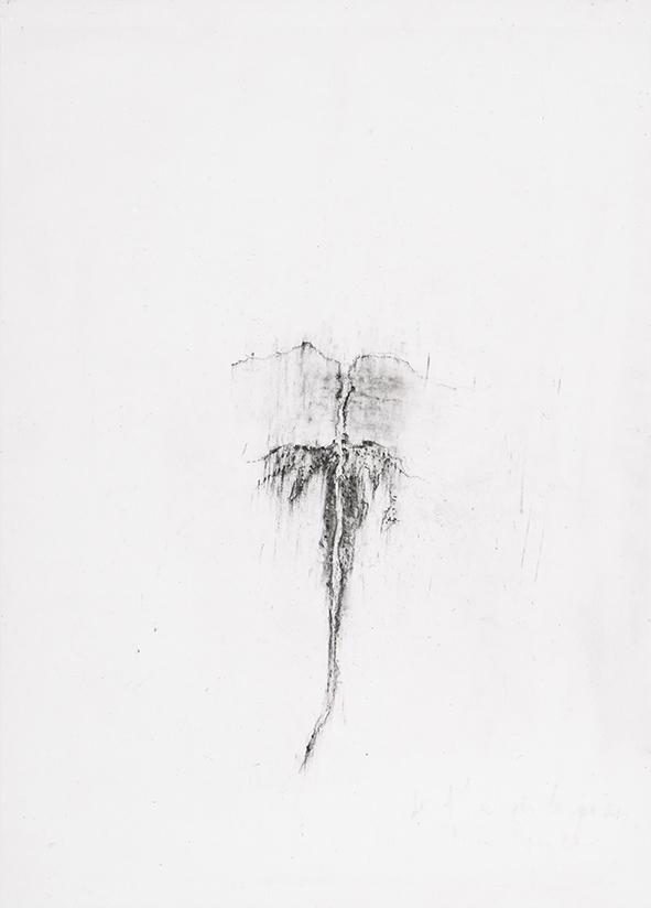 Herbier humain (série), extrait n°1, fusain sur papier, 30 x 21 cm, 2018