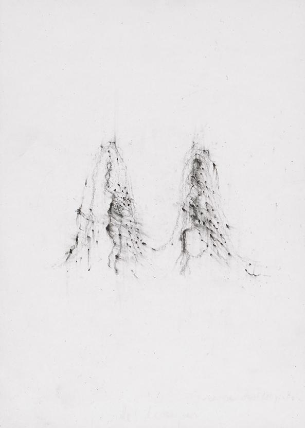 Herbier humain (série), extrait n°3, fusain sur papier, 30 x 21 cm, 2018