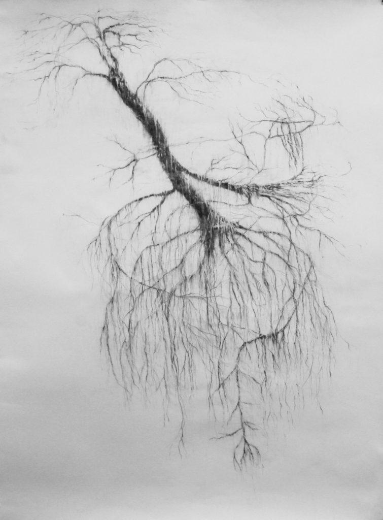 Que restera-t-il de moi quand même les vivants m'auront oubliée, fusain sur papier, 156 x 105 cm, 2017