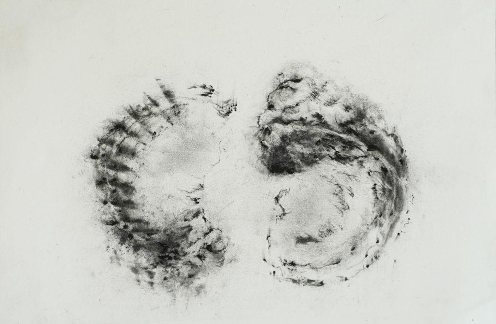 Double, fusain sur papier, 21 x 30 cm