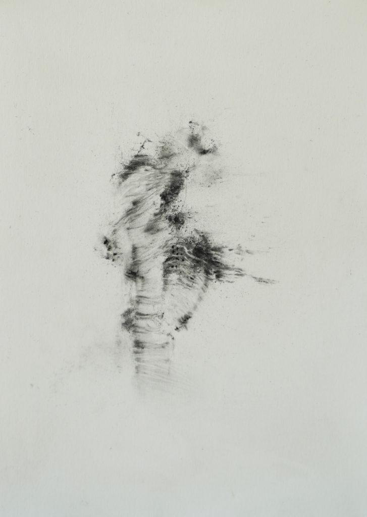 Herbier humain (série), extrait n°13, fusain sur papier, 21 x 30 cm