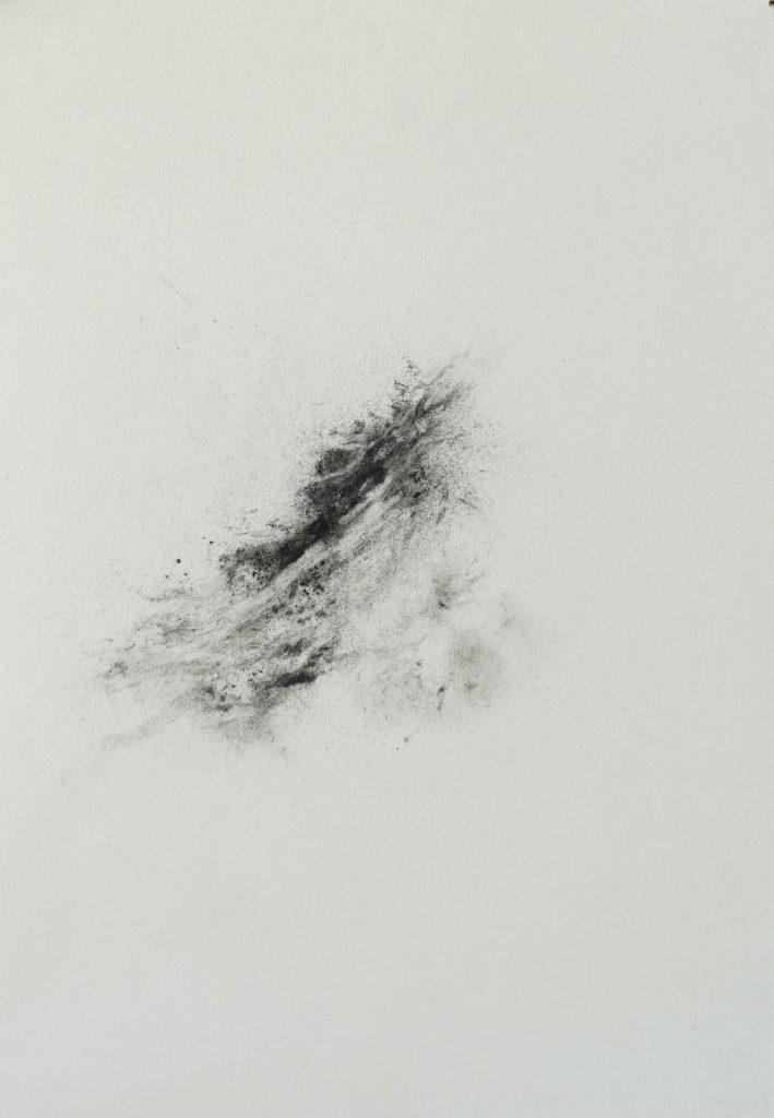 Herbier humain (série), extrait n°18, fusain sur papier, 30 x 21 cm