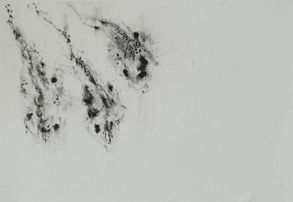 Herbier humain (série), extrait n°21, fusain sur papier, 21 x30 cm